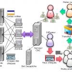 Botnet, VPN et faux chèques